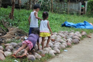 While my child watches TV and plays with gadgets, these kids had fun with these coconut husks.