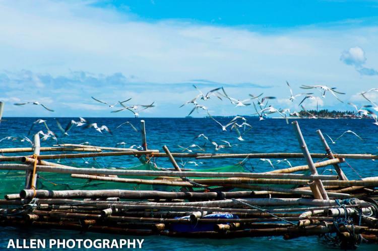 Bagongbanwa Scenery